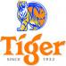 Tiger Beer 30 l. Alk. 5,0% Vol.
